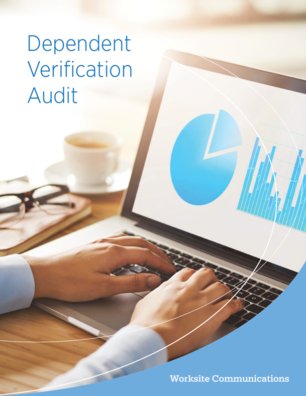 Dependent Verification Audit